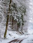 Snowland IX
