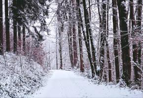 Winter has come VI by Aenea-Jones