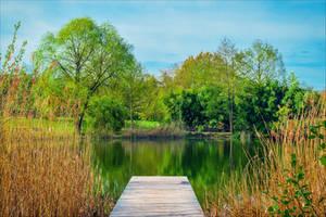 Little Lake III by Coccineus