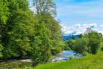 Calm River V