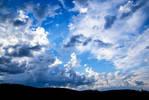 Lively Sky