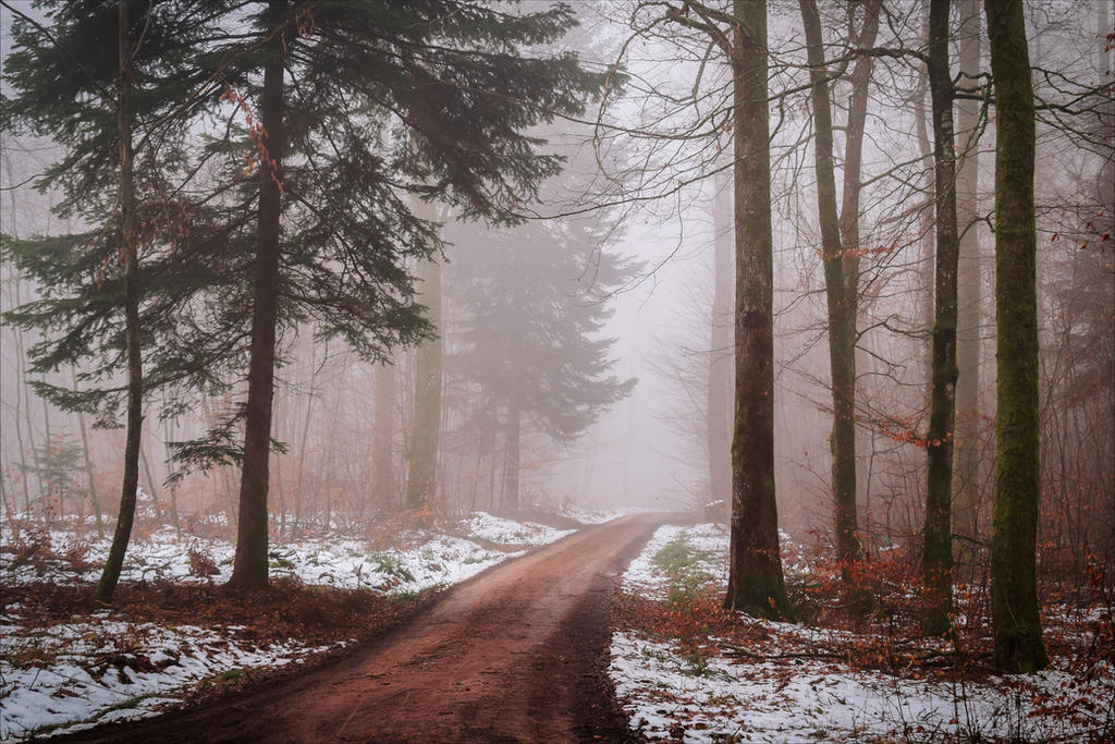 A lonely path into the Unknown V by Aenea-Jones