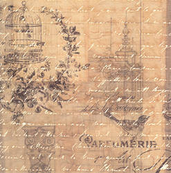 FREE vintage birdcage paper texture design stock