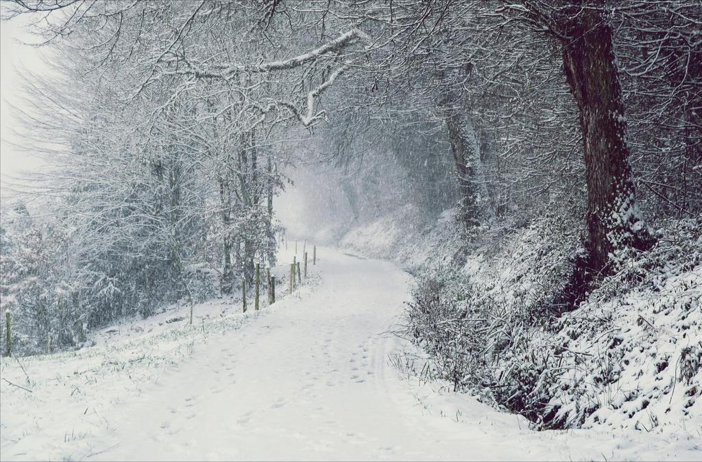 Snowland X v2.0 by Aenea-Jones