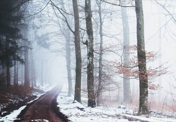 A lonely path into the Unknown IV v3.0 by Aenea-Jones