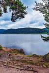 Lakeside View VIII