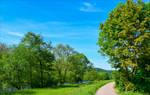 Countryside Walk II