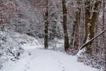Winter has come V v2.0