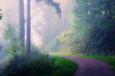 Foggy Morning XXIX v3.0 by Aenea-Jones