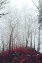 Bloodred Forest XVIII v3.0 by Aenea-Jones