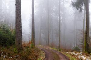 The Old Path XI v4.0 by Aenea-Jones