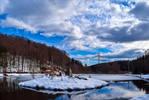 Winter Reflection IV
