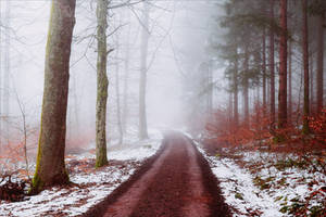 A lonely path into the Unknown VI