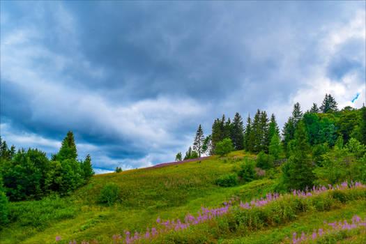 A Storm Approaching by Aenea-Jones