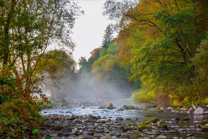 Changing Seasons VII by Aenea-Jones