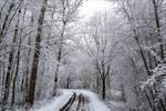 Snowland XII