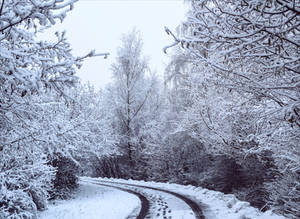 Snowland XIII