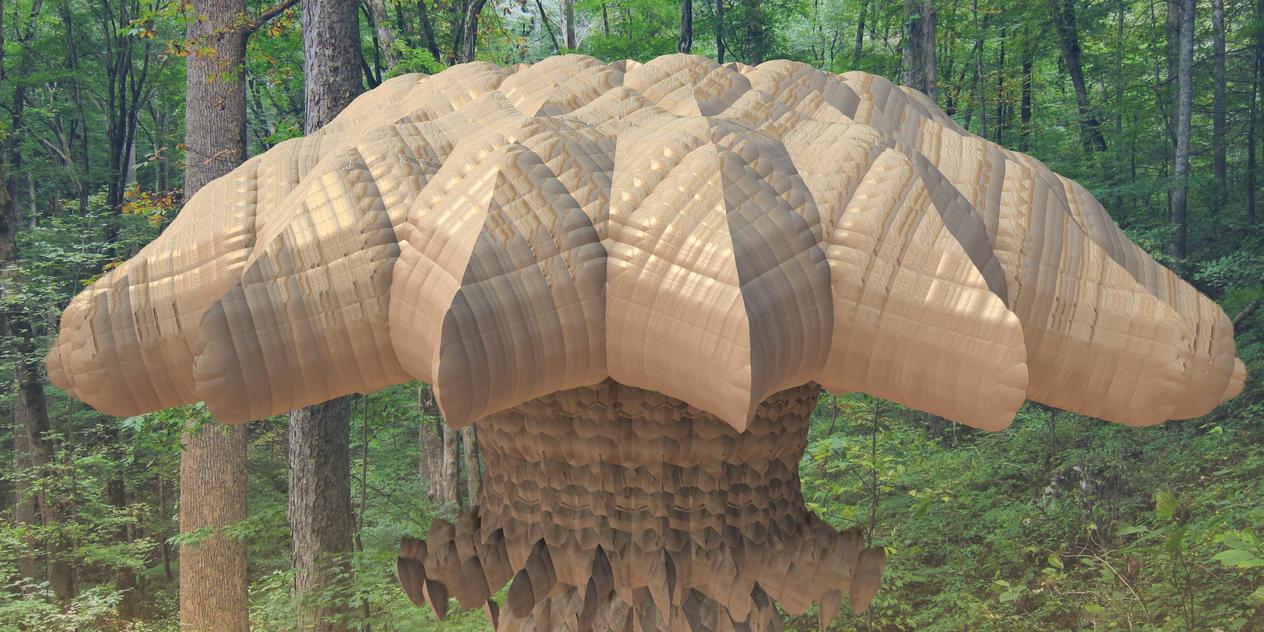 #000669-4 - Mushroom by niakok01