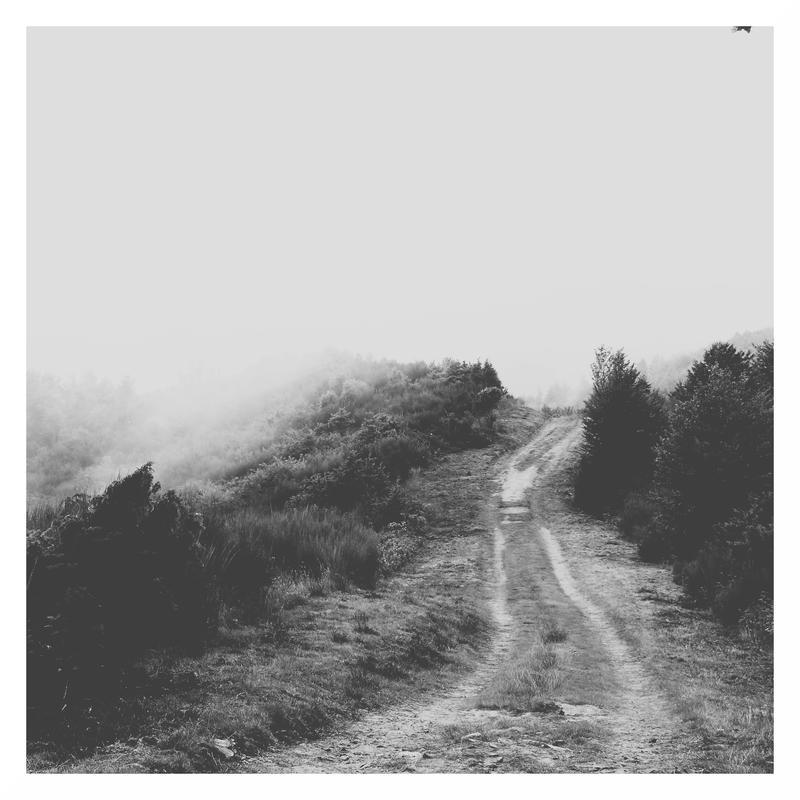 Path #1 | BnW Square Version by Niccoooo