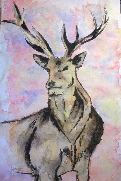 Watercolour deer by mylifeits