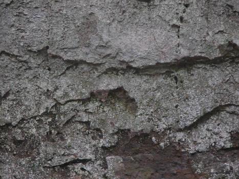 Texture 001
