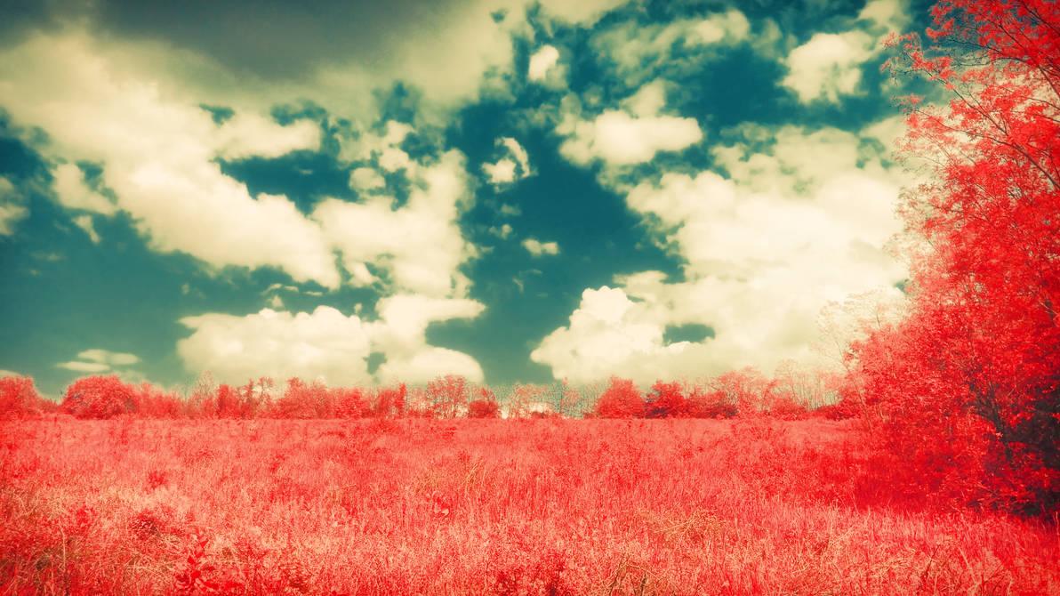 Field against the Sky by DevaPan