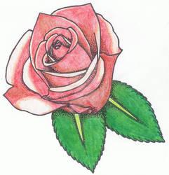 Rose 2 by jiujitsubuddah