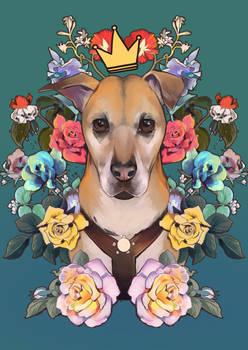 Queen Rosa