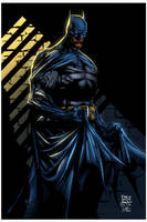 Batman by David Finch_abr XGX by knytcrawlr