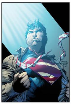 jim lee superman wondercon boysicat XG