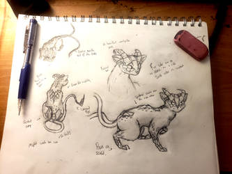 Kittycat from hell (creature design attempt)