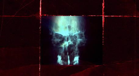 X-Ray skull on crimsonpaper