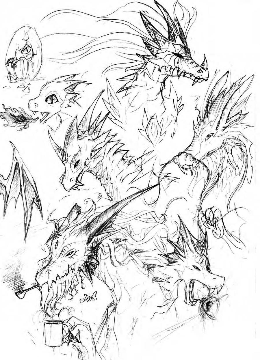 sketches of dragons by bloodsinners peak on deviantart