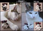 Vicky -old-