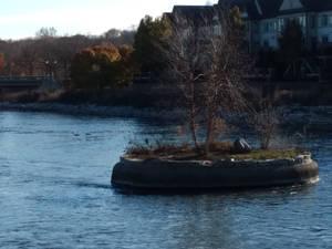 Mini Island In River
