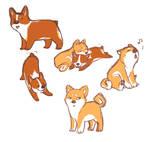Puppy doodles
