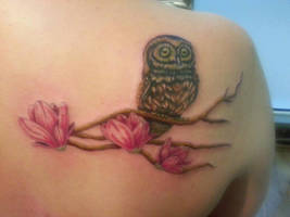 owl by puppisArt