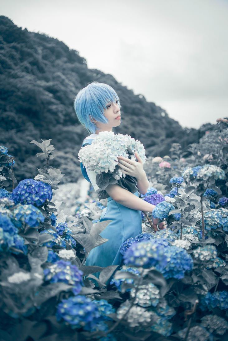 Hydrangea by yui930