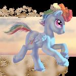 Rainbow Dashing