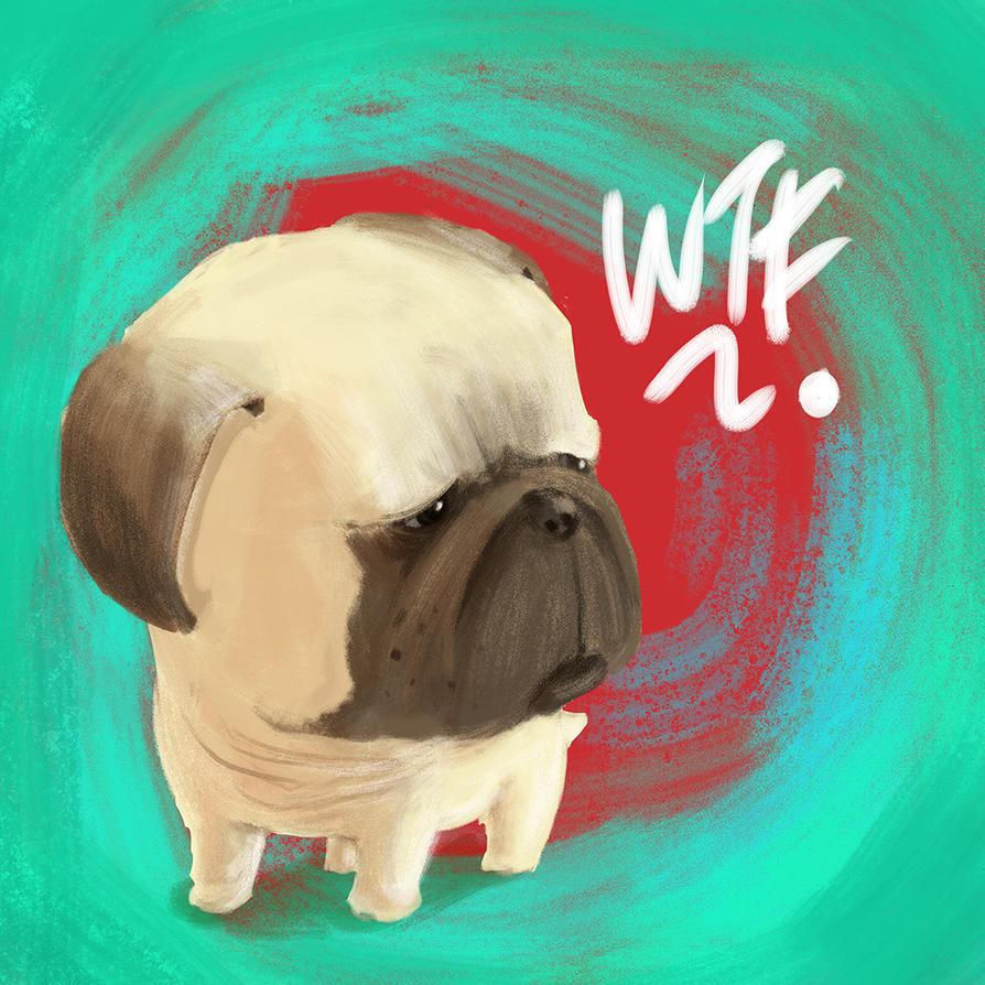 Pug of the day - WTF by SEEZ85