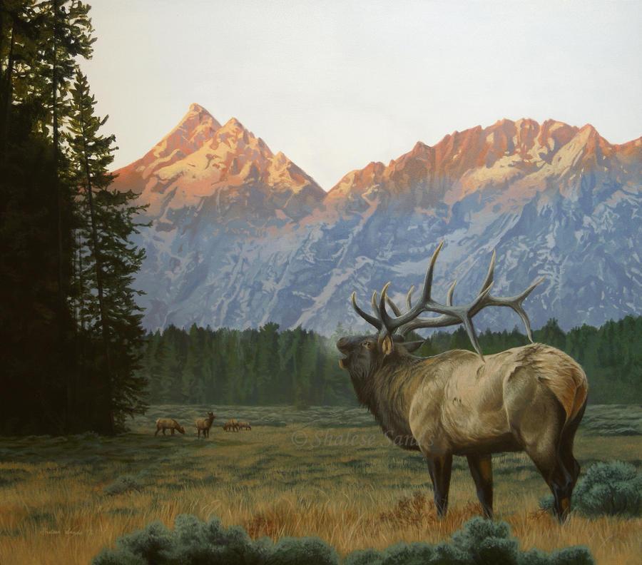Teton Splendor by Misted-Dream