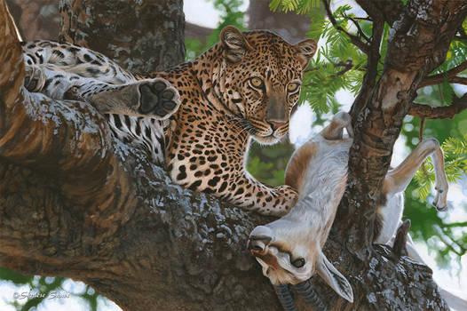 Mwindaji (Swahili for The Hunter)