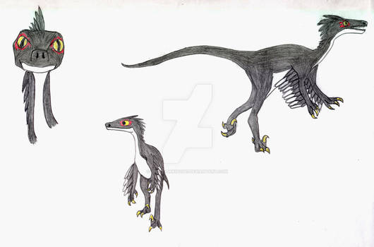 Feathered Troodon