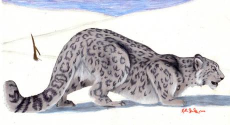 Snow Leopard by GreenChikin