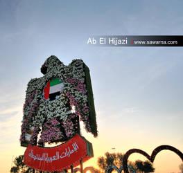 UAE symbol by boudi305