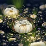 Snow Lotus