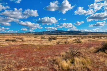 Earthlike Plains