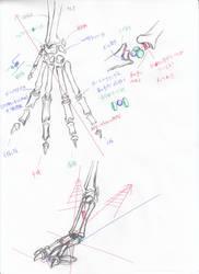 anatomy note 07
