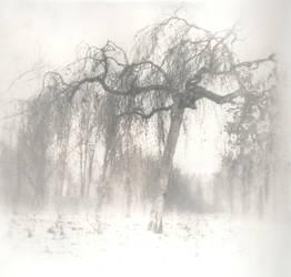 Wind of Desire by niavaah