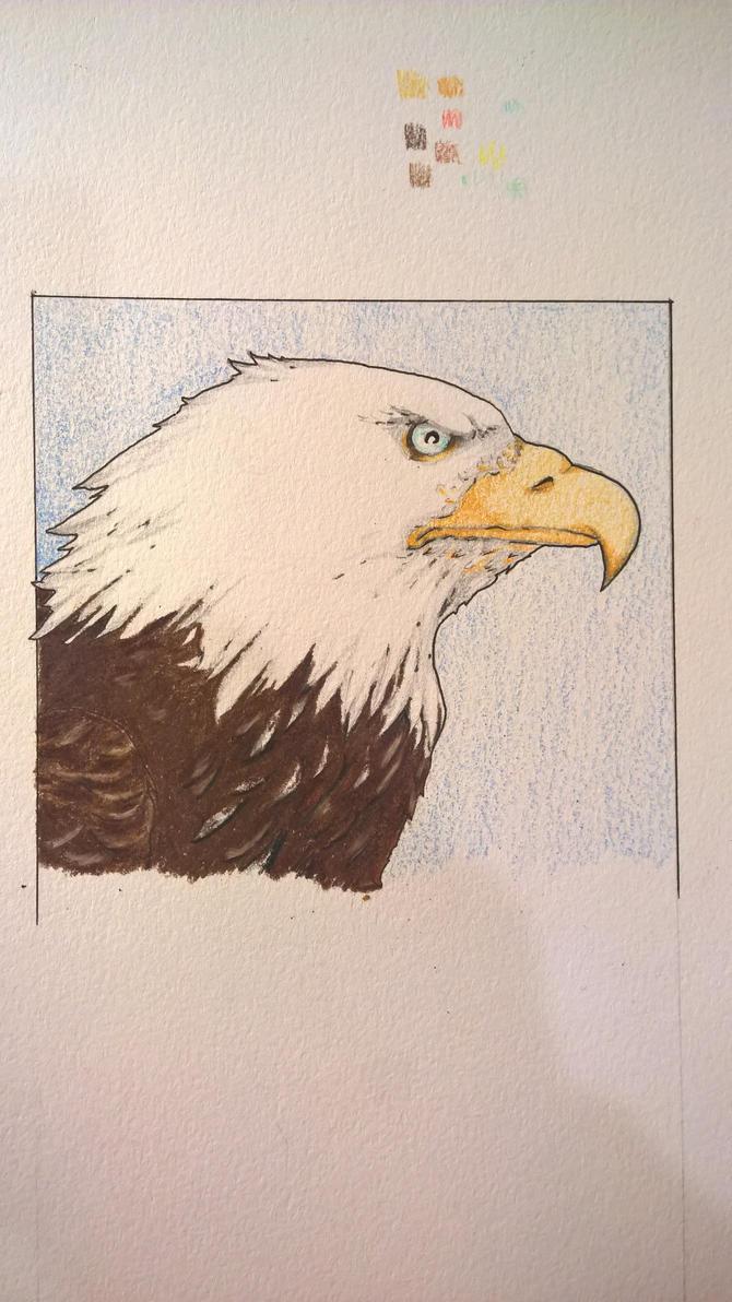 The watchful eagle by JMNunderground